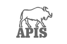 APIS Sp z o.o.