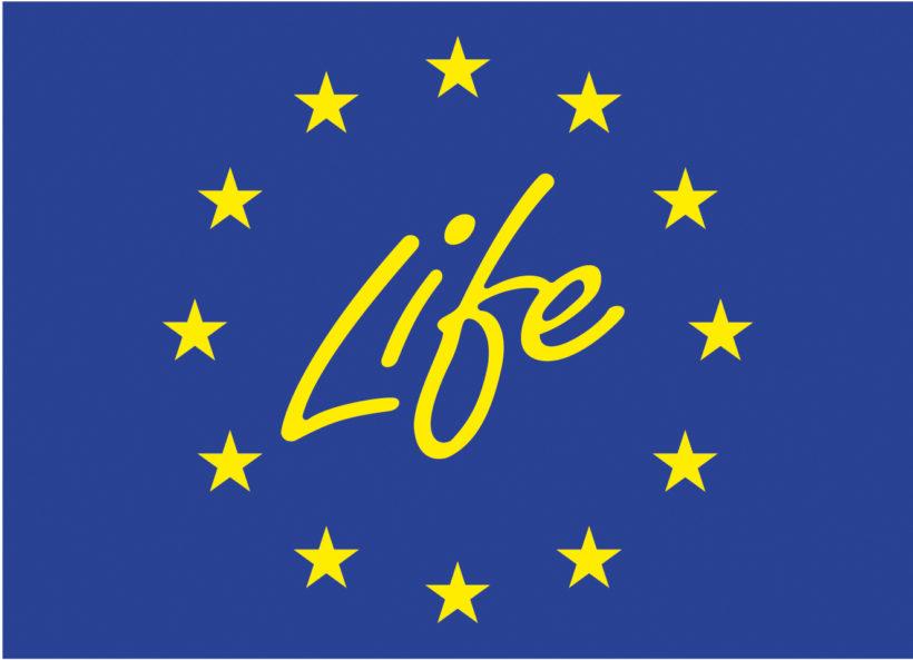 (Polski) Dzień Informacyjny LIFE 2017