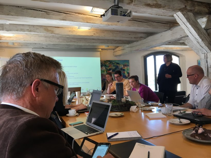 "Workshop in Copenhagen – ""Cleaner Growth"" project"