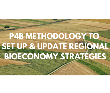 Methodology to set up/update bioeconomy strategies